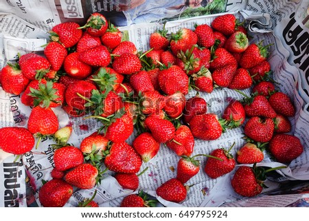 CHIANG MAI, THAILAND - FEBRUARY 10, 2017: Strawberry in the basket with Thai newspaper underlie strawberry.