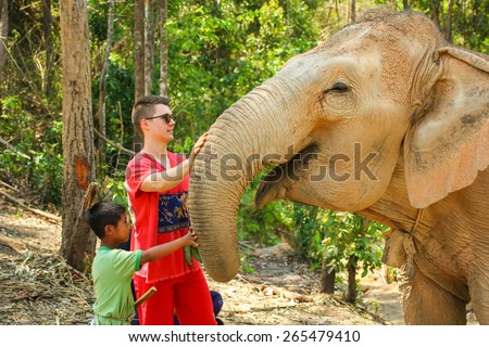 CHIANG MAI, THAILAND - MARCH 31, 2015 : People can experience the lifestyle of elephants in their natural habitat 