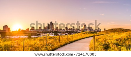 Chicago landscape photo at Northerly Island looking down curved path during beautiful sunset with wildflowers and grass in foreground at golden hour and building skyline at the horizon