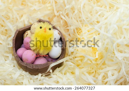 Chick sitting in Easter Egg