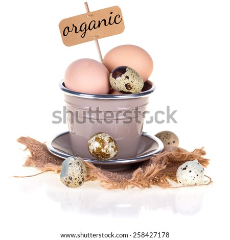 Chicken and quail eggs  isolated on white  background. Selective focus. - stock photo