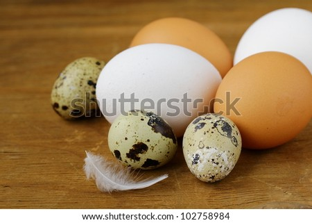 chicken and quail eggs ,  rustic style