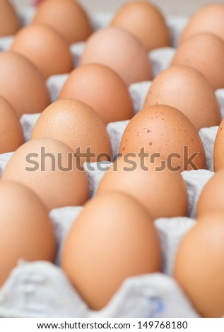Chicken brown eggs, closeup view background - stock photo