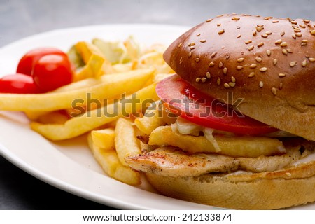 chicken burger plate with french fries and salad - stock photo