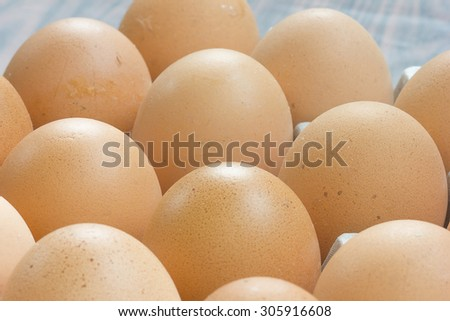 Chicken Egg fresh from farm. - stock photo