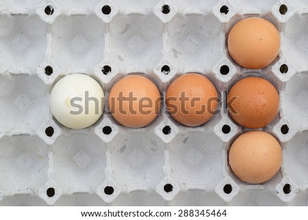 chicken egg is group but have a white egg different  - stock photo