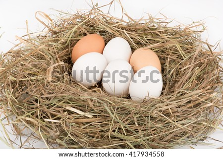 Chicken eggs in nest of straw. White and brown. On white background