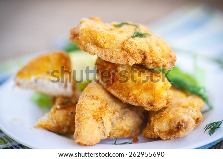 chicken fried in batter with dill on a plate - stock photo