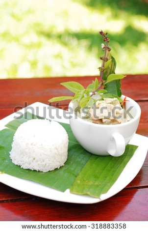 Chicken green curry with rice, Thai food - stock photo