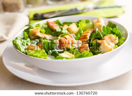 chicken salad on a plate - stock photo