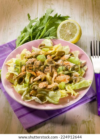 chicken salad with lettuce celery paprika and olives - stock photo