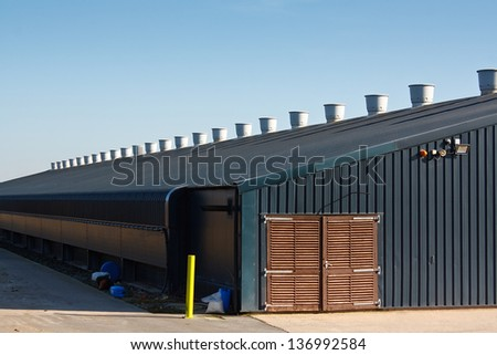 chicken shed a large agricultural building used for the commercial rearing of poultry for eggs or meat on a farm