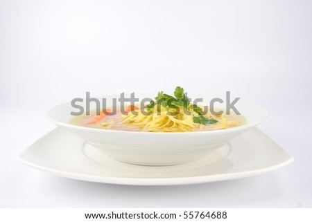 Chicken soup with macaroni and carrots decorated with parsley on a plate - stock photo