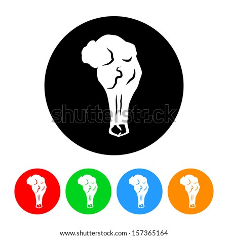 Chicken Wing Icon with Color Variations.  Raster version. - stock photo