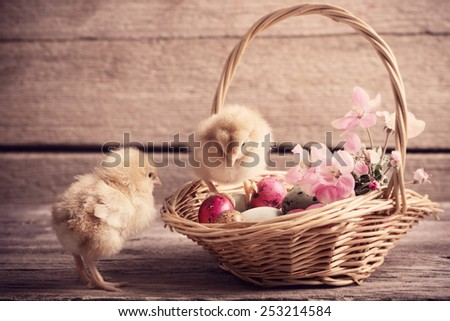chicken with Easter eggs on wooden background - stock photo