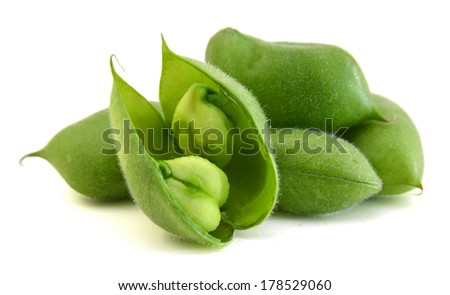 chickpea  - stock photo