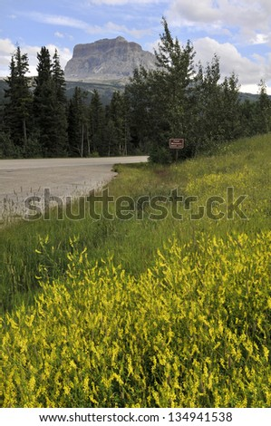 Chief Mountain in Summer Waterton National Park Alberta Canada Vertical - stock photo