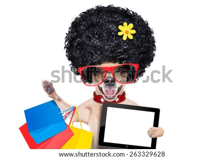 chihuahua dog with shopping bags , holding a blank pc computer tablet screen  ,ready for discount and sale at the  mall, isolated on white background - stock photo