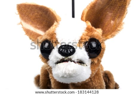 chihuahua rod marionette