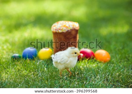 Chiken Easter cake and Easter eggs on green grass. Selective shallow focus on chicken - stock photo