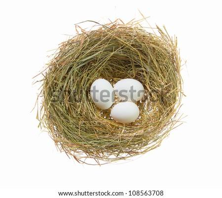 Chiken egg white in a bird's nest - stock photo