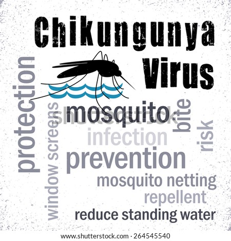 Chikungunya Virus, mosquito, prevention, protection, graphic illustration word cloud, grunge background. EPS8 compatible. - stock photo