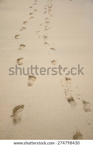 Child and adult footprints in the sand on the island of Boa Vista in Cape Verde.