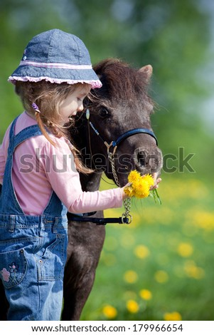 Child and small horse in field - stock photo