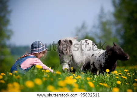 Child and small horses in field - stock photo