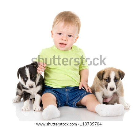 child and two puppies. isolated on white background