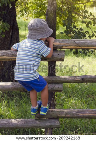 Child boy climbing over wooden fence into a garden or orchard, back view. - stock photo