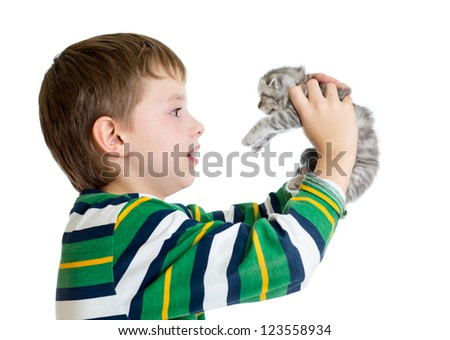 child boy holding cat kitten isolated on white background - stock photo