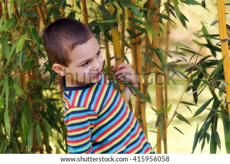 Child boy in a bamboo garden or forest