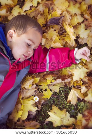 Child boy laying on ground in yellow  leaves in autumn or fall. - stock photo