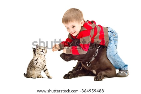 Child, dog and kitten playing together isolated on white background - stock photo