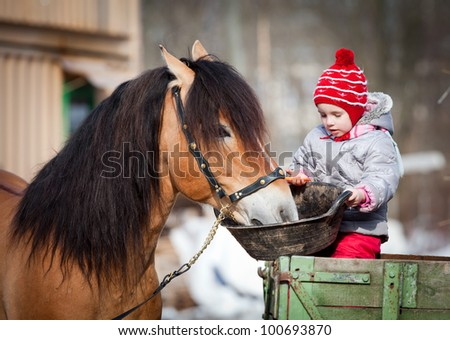 Child feeding a horse, sitting on a cart in the winter. - stock photo