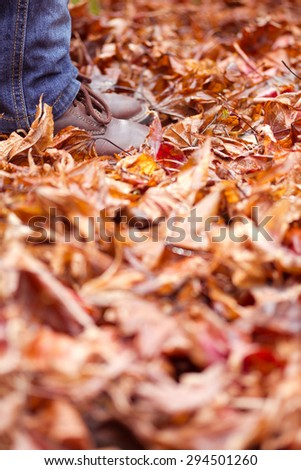 Child Feet and Legs Standing in Autumn Leaves vertical aspect - mannequin used no release required