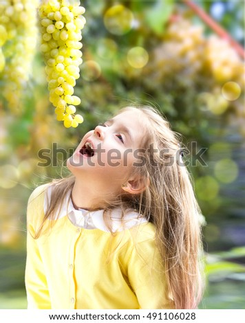 Child girl eating fresh grapes fruits in garden.Caucasian kid outdoors happy childhood concept.Healthy vitamin nutrition.Autumn harvest.