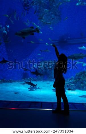 Child girl in front of big aquarium - stock photo