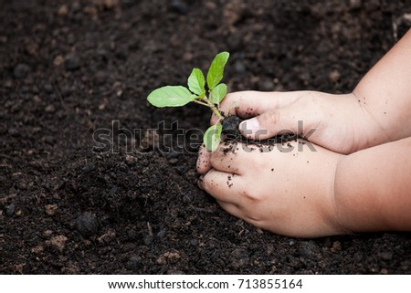Child hands planting young tree on black soil as save world concept