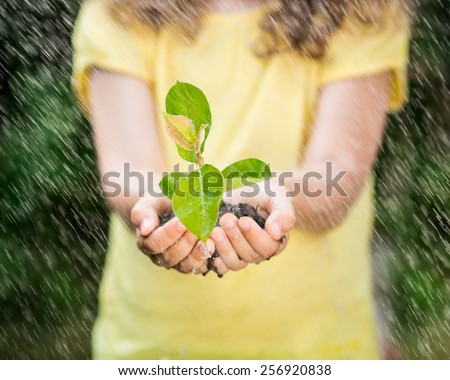 Child holding young plant in hands against spring green background. Ecology concept. Earth day