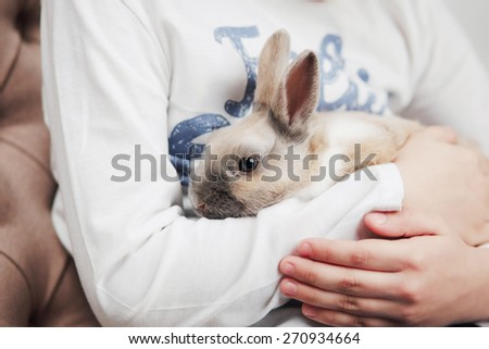 Child is holding funny rabbit