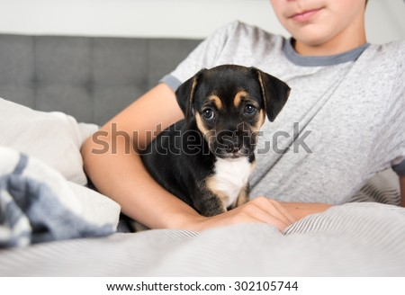 Child Protecting Black Puppy with Floppy Ears - stock photo