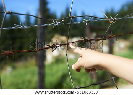 Childs Hand Touching Barbed Wire Remains Stock Photo (Edit Now ...