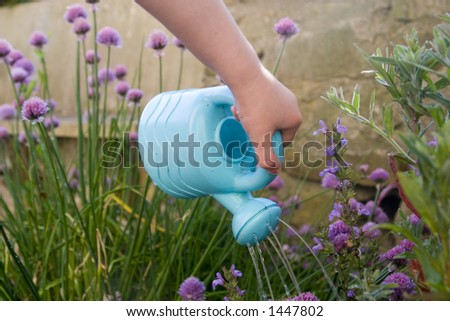 Child's hand with small plastic blue watering can. - stock photo