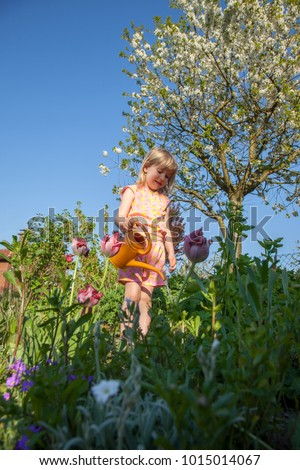 child watering flowers in the garden at home