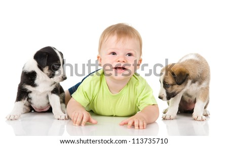 child with puppies. isolated on white background - stock photo