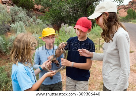 Children are holding a  Great Basin Gopher Snake (Pituophis catenifer deserticola), Utah - stock photo