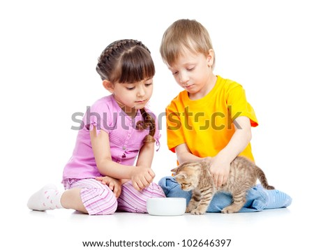 children boy and girl feeding attractive kitten