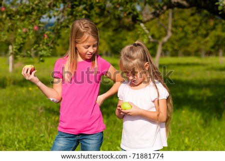 Children eating apples in a garden on a wonderful sunny day
